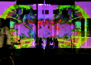 RISE – Pioneer Shire Building Projection